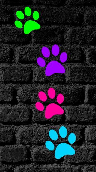 Обои на телефон текстуры, лапа, красочные, colorful paw prints