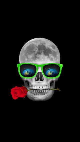 Обои на телефон очки, черные, череп, скелет, розы, красые, земля, зеленые, звезды, белые, 2017