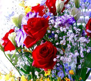 Обои на телефон цветы, -----------