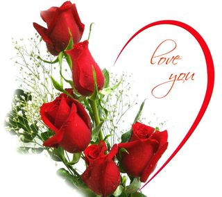 Обои на телефон знаки, розы, поговорка, любовь, love