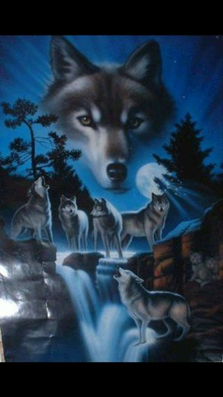Обои на телефон семья, луна, волк, wolf family