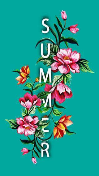 Обои на телефон девчачие, цветы, розовые, растения, милые, лето, крутые, зеленые, аква