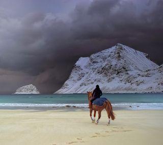Обои на телефон лошади, прекрасные, лошадь, зима, horse  riding