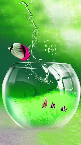 Обои на телефон рыба, аквариум