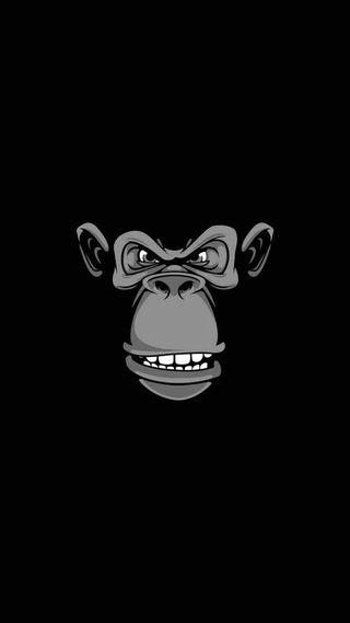Обои на телефон черные, темные, обезьяны, минимализм, амолед, hd, chimp, ape, amoled, 929, 4k