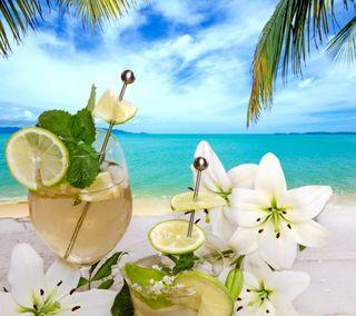 Обои на телефон свежие, цветы, тропические, пляж, пальмы, напиток, море, лето