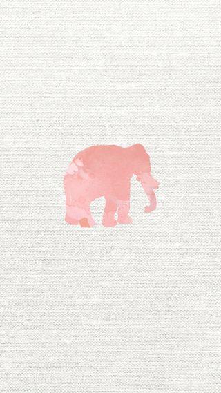 Обои на телефон слон, розовые, прекрасные, девчачие, айфон, iphone