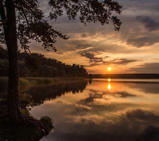 Обои на телефон лес, солнце, отражение, озеро, лучи, закат, деревья