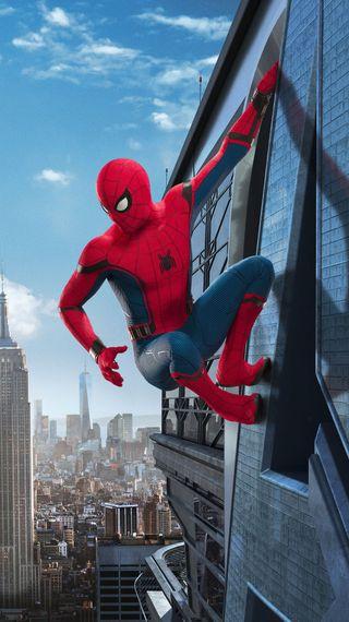 Обои на телефон человек паук, паук, марвел, возвращение домой, marvel