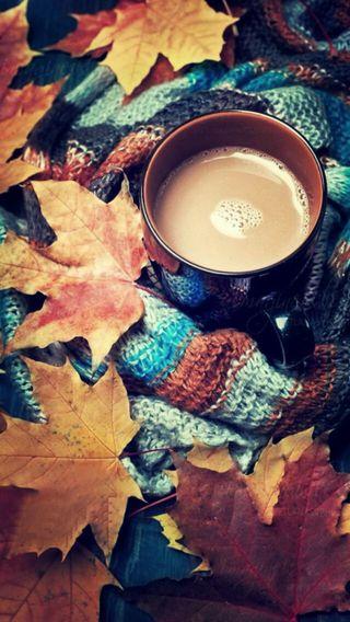 Обои на телефон осень, scarf, cocoa