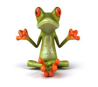 Обои на телефон лягушка, frog meditating, 2160x1920
