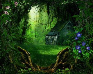 Обои на телефон джунгли, цветы, природа, лес, коттедж, зеленые, деревья, деревня