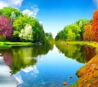 Обои на телефон солнечные, день, деревья, вода, sunny day