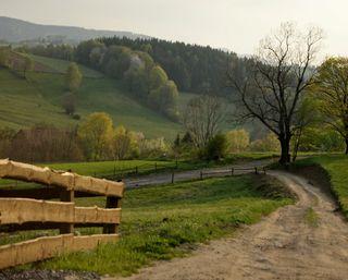 Обои на телефон холм, поле, пейзаж, луг, живописные, деревья, ворота, scenic meadows