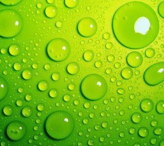 Обои на телефон капли, зеленые, вода
