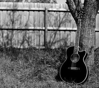 Обои на телефон сад, гитара, приятные, новый, музыка, крутые, инструмент, звук, дерево