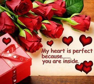 Обои на телефон романтика, сердце, розы, поговорка, мой, любовь, красые, коробка, perfect, love