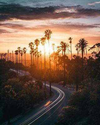 Обои на телефон фотография, природа, пейзаж, осень, любовь, красочные, калифорния, закат, дорога, love, fahad nur, california mornings