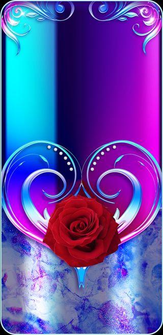Обои на телефон девчачие, цветы, цветочные, цветение, фиолетовые, симпатичные, сердце, розы, прекрасные, духовные, rosebloom