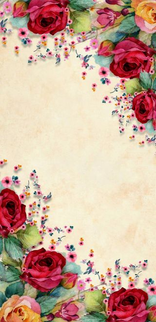 Обои на телефон сад, цветы, цветочные, розы, прекрасные, rosegarden, luxurious