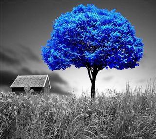 Обои на телефон прекрасные, пейзаж, beautiful  landscap