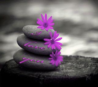 Обои на телефон цветы, фиолетовые, ты, любовь, камни, i love you, love