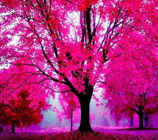 Обои на телефон good, love, любовь, природа, милые, розовые, пейзаж, красота, лес, прекрасные