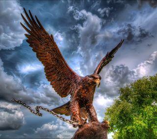 Обои на телефон орел, небо
