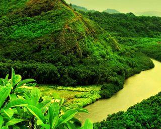 Обои на телефон холм, река, пейзаж, листья, горы, greenland