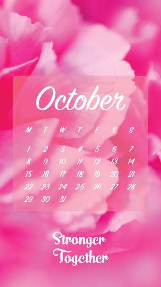 Обои на телефон октябрь, календарь, zedgeoct18, october link