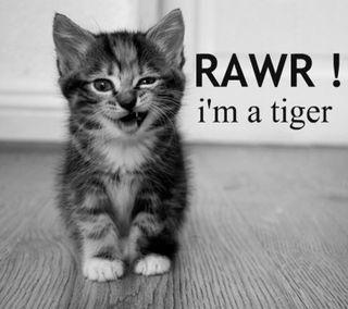 Обои на телефон тигр, котята
