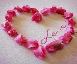 Обои на телефон лепестки, сердце, любовь, love