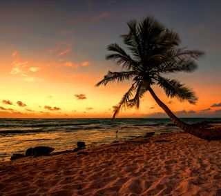 Обои на телефон пляж, un, fg