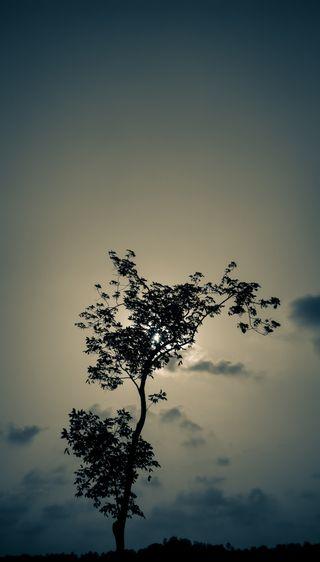 Обои на телефон темные, свобода, природа, одиночество, ночь, луна, жизнь, дерево, good, featured
