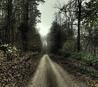 Обои на телефон природа, пейзаж, дорога