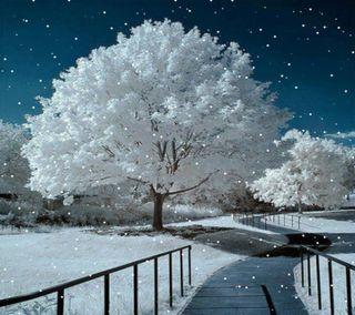 Обои на телефон дерево, снег