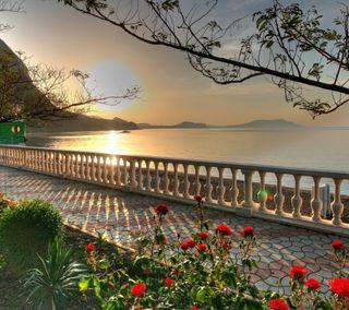 Обои на телефон берег, цветы, природа, прекрасные, пляж, пейзаж, море, закат, shoreline