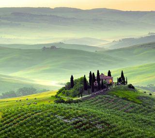 Обои на телефон холм, туман, итальянские, италия, горы, tuscany, tuscan