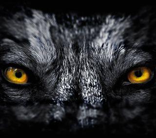 Обои на телефон хищник, ты, темные, страшные, оборотень, жуткие, готические, глаза, волк, видеть, арт, i see you, art