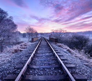 Обои на телефон рельсы, пути, поезда, путь, небо, железная дорога, деревья