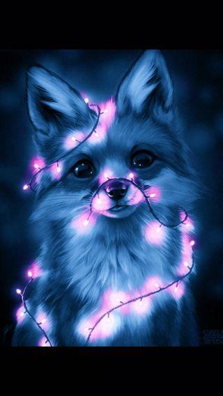 Обои на телефон лиса, синие, милые, галактика, galaxy, foxy
