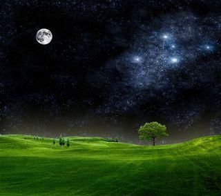 Обои на телефон дерево, природа, поле, ночь, новый, небо, крутые, звезды, естественные, дизайн, hd