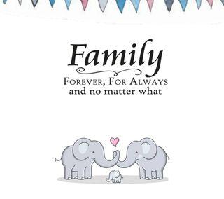Обои на телефон слон, семья, любовь, всегда, love, family always