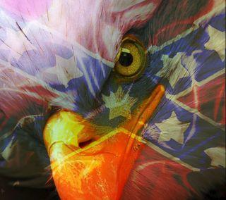 Обои на телефон орел, флаг, southern eagle