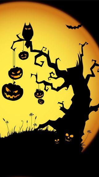 Обои на телефон тыква, хэллоуин, темные, ночь