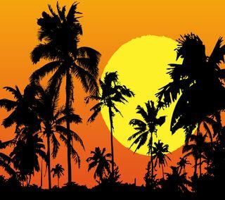 Обои на телефон тропики, силуэт, тень, солнце, природа, закат, the tropics