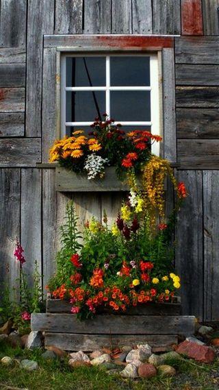 Обои на телефон окно, цветы, with flowers, window with flowers