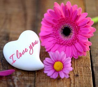 Обои на телефон валентинка, цветы, сердце, романтика, любовь, love