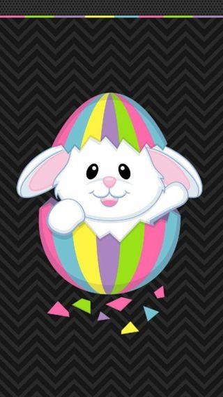 Обои на телефон яйца, кролик, пасхальные, cutest easter bunny