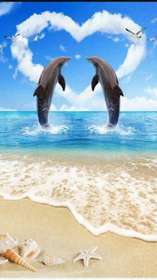 Обои на телефон море, любовь, дельфины, mammals, love, dolphin love